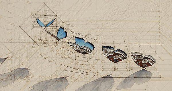 Calculation Drawings  Rafael Araujo 2